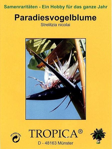 Bild von Paradiesvogelblume (Samen)