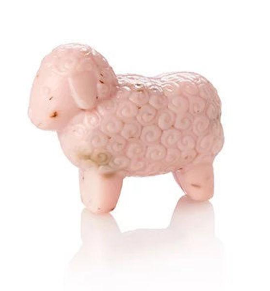 Bild von Schafmilchseife - Rose - Schaf (1kg/39,50€)