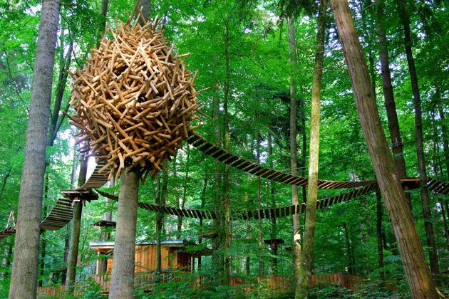 Bild für Kategorie Mainau Erlebniswald